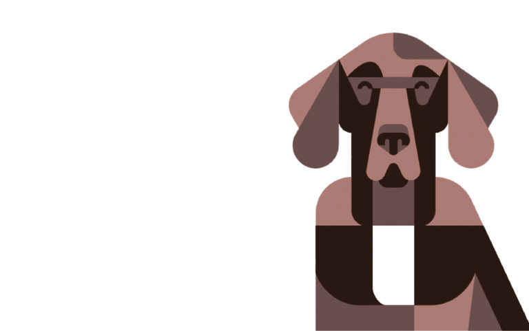 Infographic: Recognizing Signs of Discomfort in Your Dog